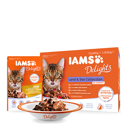 IAMS Delights Land & Sea kolekcija u umaku